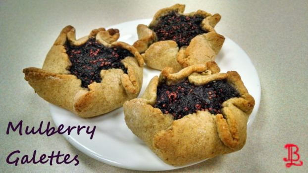 Mulberry Galette Recipe by adnileb