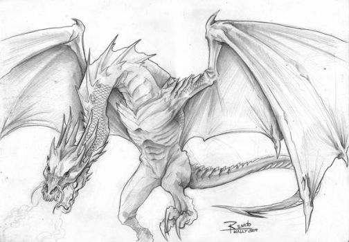 Dragon concept by renatothally