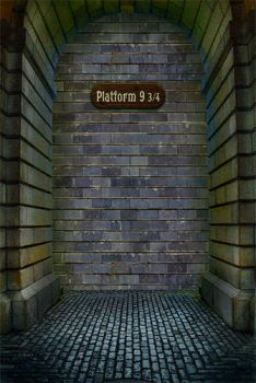 Platform Nine and Three-Quarters by SaveUzz