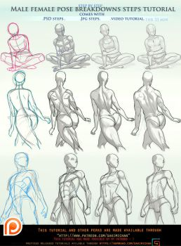 male/female pose breakdown tutorial pck.promo. by sakimichan