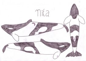 Nita by Orcas-of-Arlinde