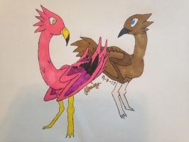 Flamingo and Emu birbs by FlamingGatorGirl