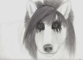 Jake Pitts as a wolf by wolvenwillow