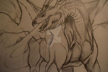 Dragon sketch by TerraConceptualArt