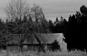 Place of quiet solitude... by thewolfcreek