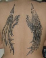 Wings Tattoo Finished by Catherine-OC