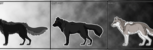 Velost Helshire - the common species by Cylithren