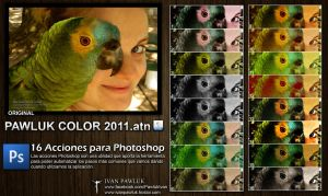 16 Acciones- PAWLUK COLOR 2011 by ipawluk