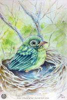 Brid 2015_Watercolor practice by chuaenghan