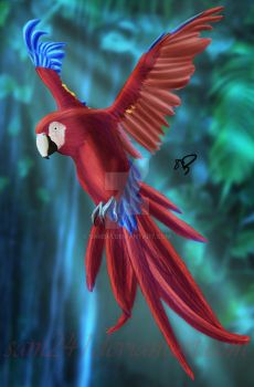 Scarlet Macaw by sam241