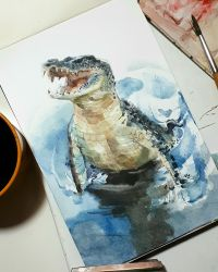 crocodile study by claratessier