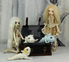 Travel arrangements by miradolls