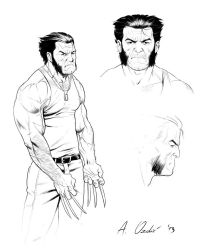 Wolverine studies by ArminOzdic