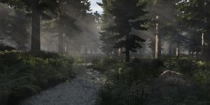 Morning in the Forest v.2 by SwissAdA
