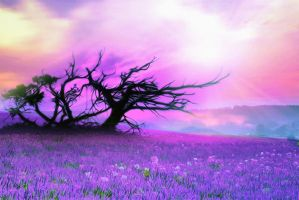 background stock83 by Sophie-Y