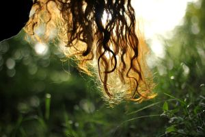 pull me up by the roots of my hair by Adrienneknott
