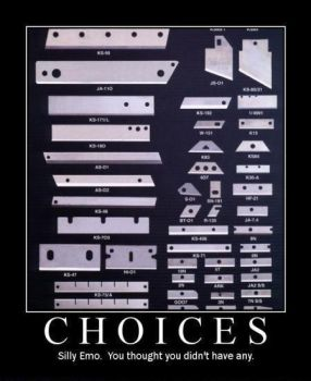 CHOICES by MalevolentDeath