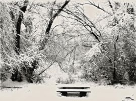 Snow Bench by TearsStock