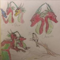 Cherries as Dragons [redesign] by xXSilvrTheShipprXx