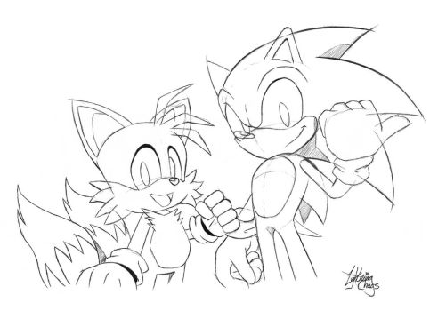 OHS: Sonic and Tails by LightningChaos2010