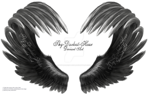 Airbrushed Wings - Silver 01 by Thy-Darkest-Hour