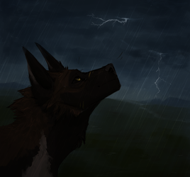 stormy wolf by nerfusia