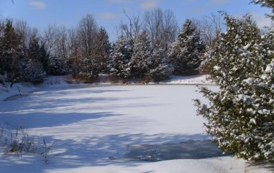 The Pond is Frozen Over by effing-stock
