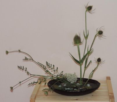 Ikebana - wild things by digikijo