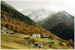 Alpine Autumn by Firebloom