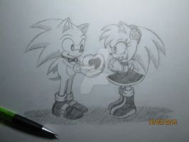 Sonic and Amy by karin-karukami
