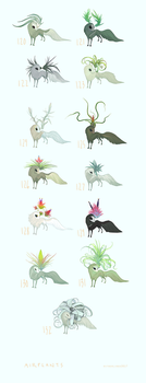Air Plants Collection by witherlings
