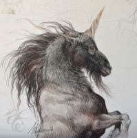 Black Unicorn Sketch by Fabeltier