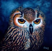 Owl Rising by znkf0908
