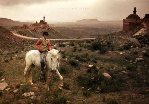 prince on a white horse by oscarsnapshotter