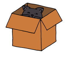 Box Cat by akaLOLCat