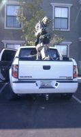 Master Chief about truck surf by MasterChief42283