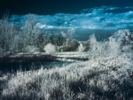 Setting Sun on the Landscape (IR) by KBeezie