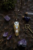 Barn Owl with Moonstone Necklace by Lavenderwitch