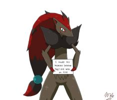 Pokemon Shaming - Zoroark by UltimateCharizard006