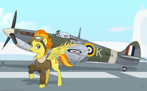 Spitfire and the spitfire by SarmaTeppou