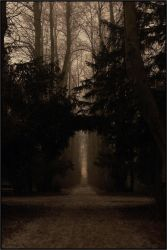 Archway by jo-i