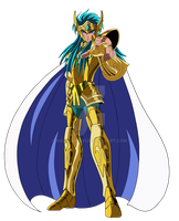 Saint seiya Aquarius Camus by hadesama01