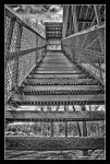 Only Way is Up by FallesenPhotography