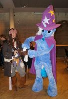 Trixie and the famous bunny from the hat by deryoshi