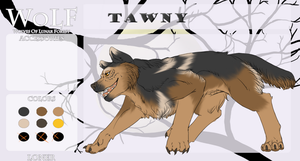 WoLF: Tawny - Loner - The Moonchild by SomeSunnyBunny