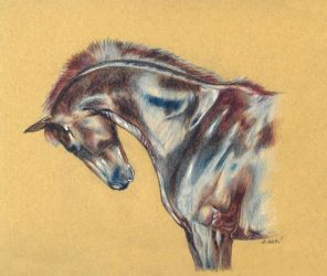 Drawing - Shiny horse I. by Ennete