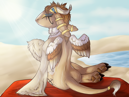 Bask in the sun by Gelasio