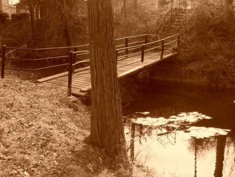The bridge over my lake by TheEvyRose