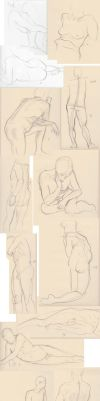 Life drawings May 2012 by stevygee