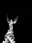 guardian angel..mono.. by kretka